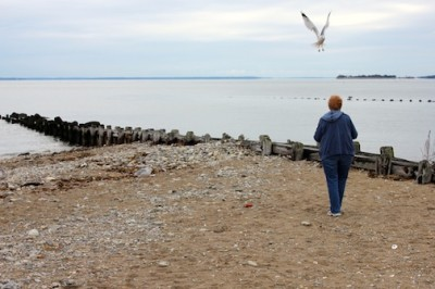 Oct. 7, 2012 | Birds at the Beach