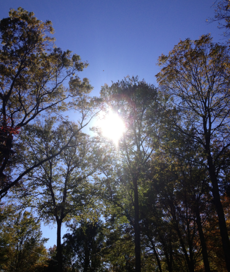 Oct. 16, 2012 | Fall Has Arrived