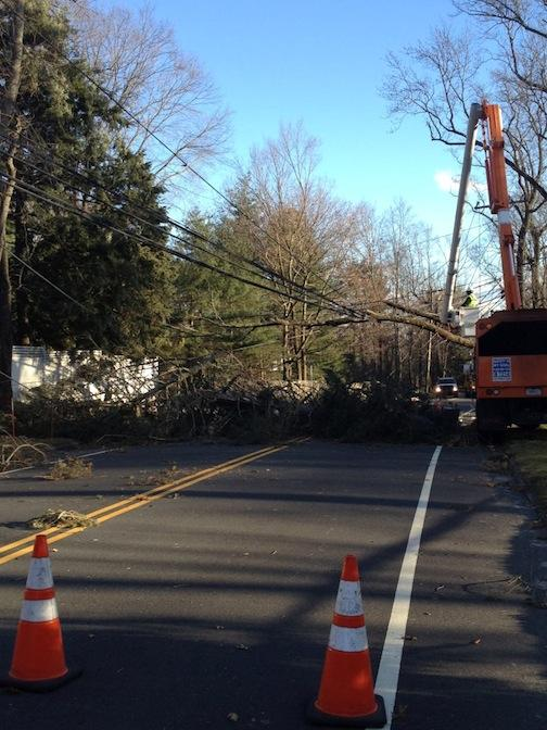 Jan. 31, 2013 | Tree Down on North Ave.