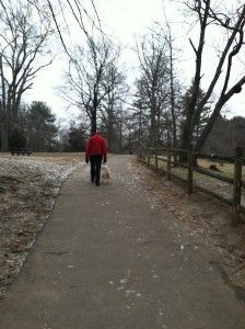 Feb. 5, 2013 | Quiet Day at the Westport Dog Park
