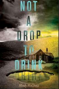 """""""Not a Drop to Drink"""" by Mindy McGinnis sets up a world without water"""