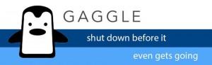 Gaggle gone viral