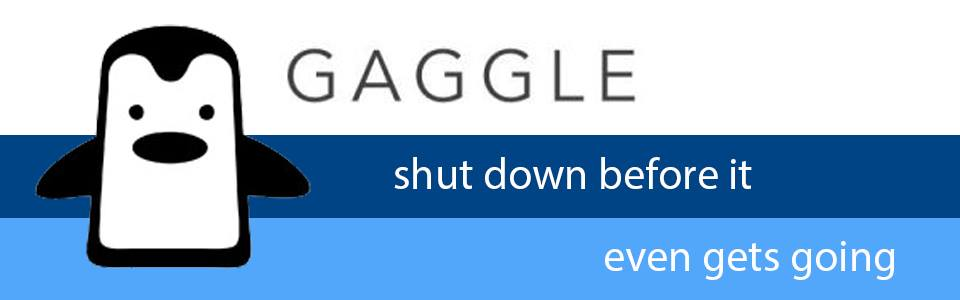 Gaggle+gone+viral