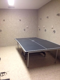 A ping-pong table gathers dust, while the shower heads begin to rust.
