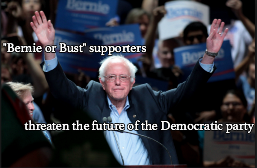 """""""Bernie or bust"""" supporters damage the Democratic party"""