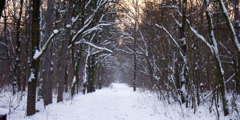 Snow draws locals to beloved winter locations