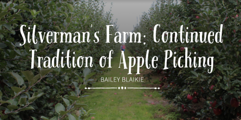 Silverman's Farm: The Continued Tradition of Apple Picking