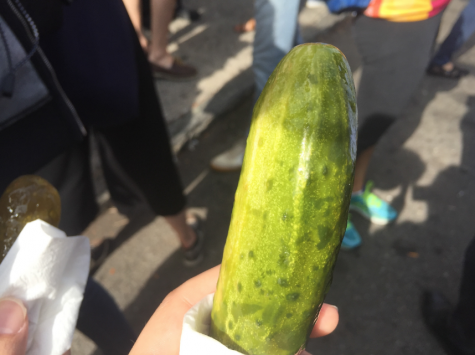 Pickle Day in pictures