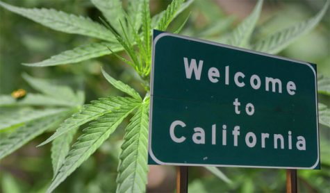 Legalization of marijuana in California podcast
