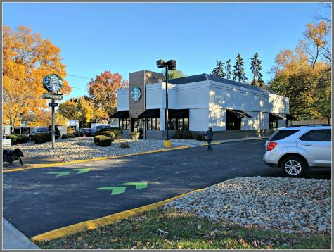 Westport retail shops utilized for midterm studying