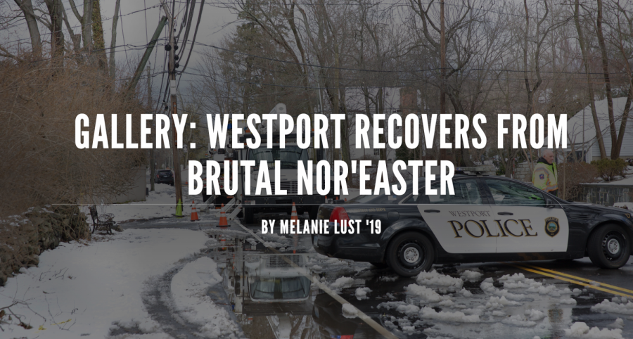 Westport recovers from brutal Nor'easter