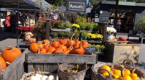 Terrain Autumn Bounty Fest ushers in the fall season