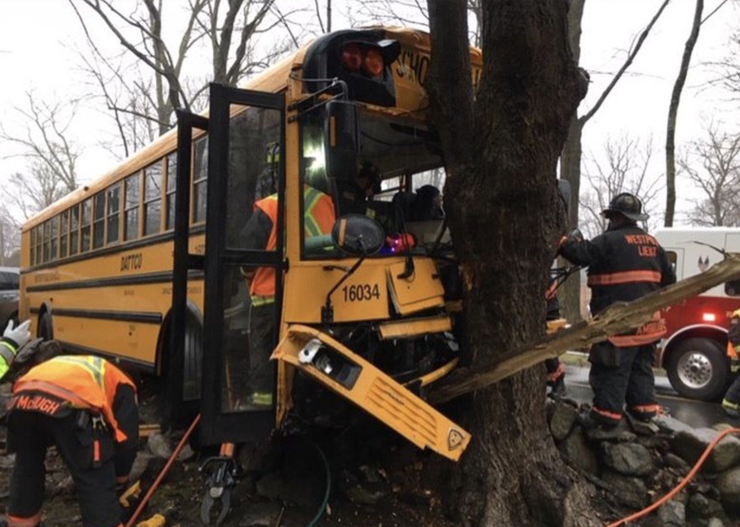 First responders attend to a bus that crashed into a tree and stone wall while carrying over 20 elementary schoolers. Several of the kids sustained minor injuries, though none had to be hospitalized. The driver was injured and taken to Norwalk Hospital by EMS.