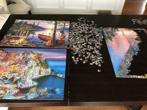 Many families have been making puzzles to pass the time while school is out.
