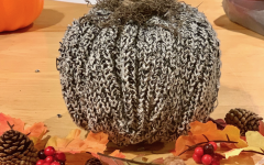 In the spirit of fall, this homemade pumpkin craft serves as a great inexpensive home decor item for individuals to make.