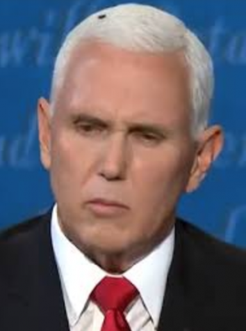 ike Pence, the current Vice-president of the United States and Trump's running mate for re-election, had a picture go viral of him with a fly on his head that was taken during the VP debate versus Kamala Harris.