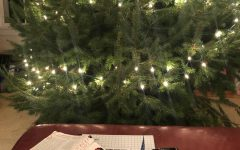 Homework assigned over the holiday break forces students to focus on school assignments rather than festive activities like decorating a Christmas tree