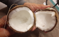 Coconuts are my favorite fruit to both eat and make a drink out of. Not only are they delicious, but they have also been shown to offer various health benefits, including improvements in heart health, digestion, weight loss, brain health, blood sugar levels and immunity.