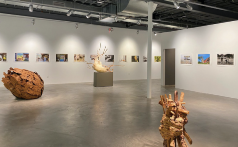 New exhibit 'Between the Ground and the Sky' is presented by MoCA Westport up until Oct. 17, 2021 and features photographs, plants and sculptures inspired by local farming.