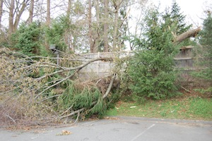 Nov. 1, 2012   Staples Hit Hard