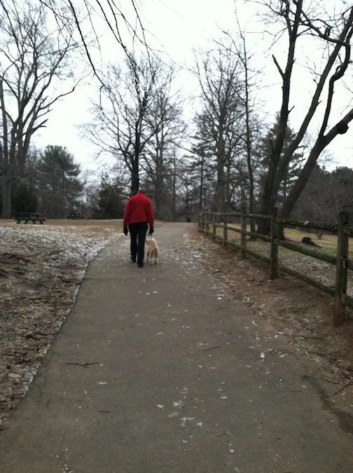 Feb. 5, 2013 | Quiet Day at the Westport Dog Park