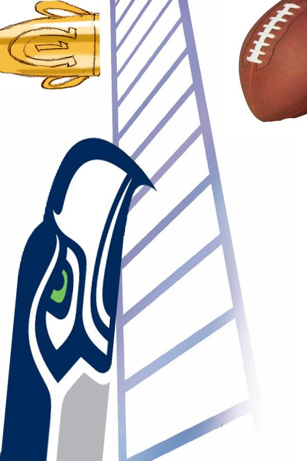 Sirlin feels that the Seahawks, an underrated team of underdogs, have a promising future.