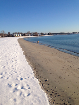 5 Things to do in Westport over winter break