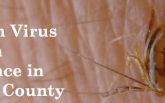 Powassan Virus makes an appearance in Fairfield County