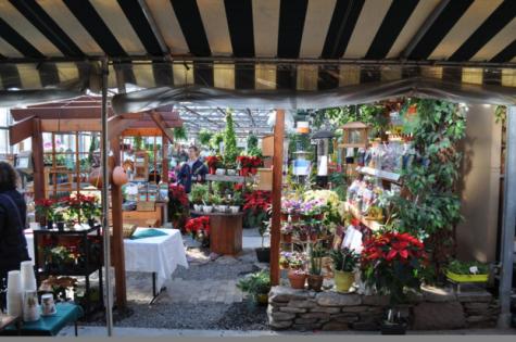 Westport Farmers Market bundles up for winter