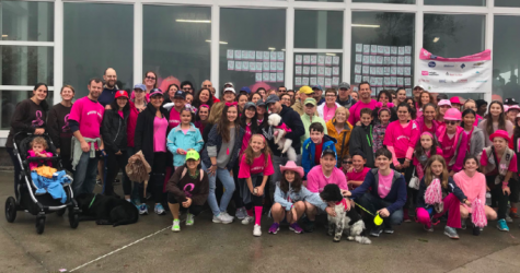 Making Strides Against Breast Cancer Sets New Fundraising Record In Westport