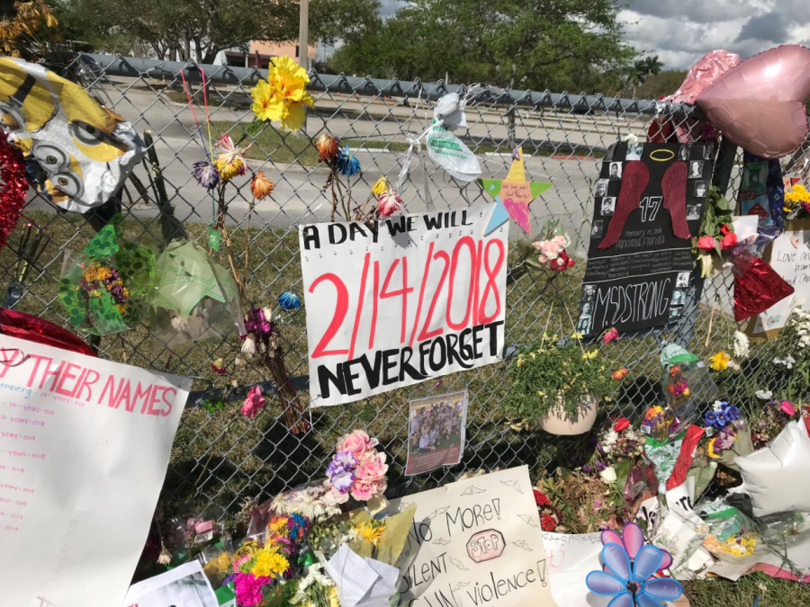 Parkland victims relentlessly pursue change