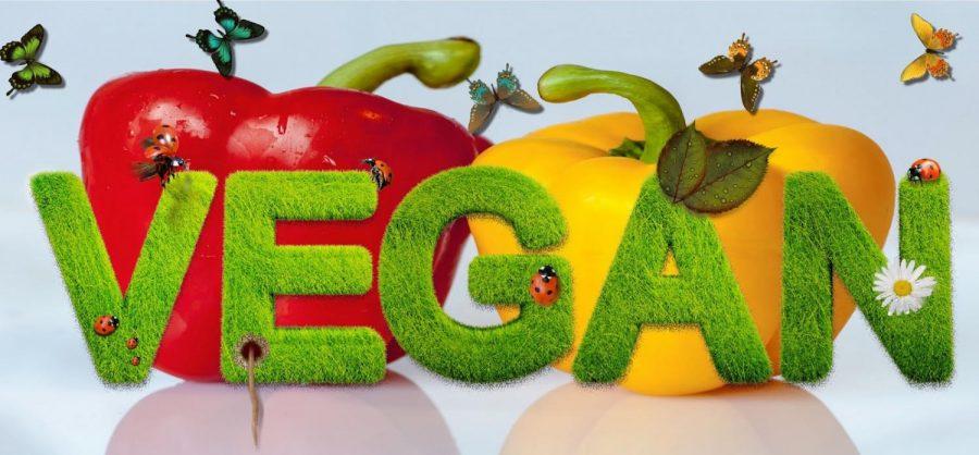 3+reasons+people+go+vegan