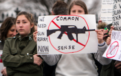 Immense number of mass shootings persists in year following Parkland massacre