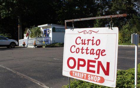 Curio Cottage conceals hidden gems in downtown Westport