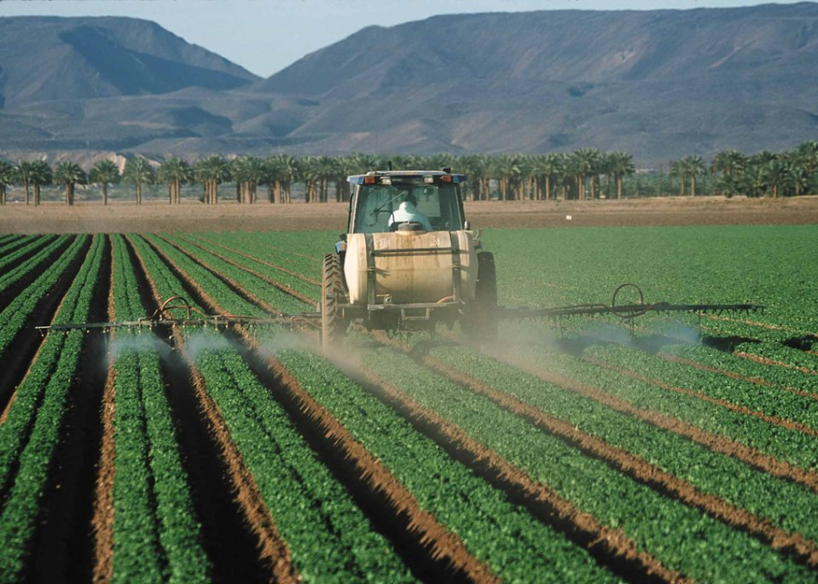 Pesticide+application+on+leaf+lettuce+in+Yuma.