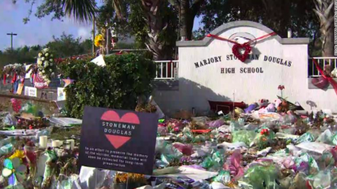 Parkland one year anniversary calls for reflection on past year
