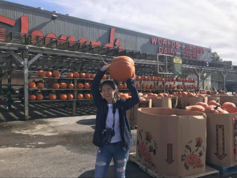 Stew Leonard's kicks off the fall season with its family-friendly Fall Festival