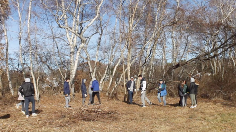 Staples' Club Green participated in an invasive species cleanup at Sherwood Island State Park. The cleanup targeted bittersweet vine, porcelain berry and mugwort that threatened the survival of native plants.