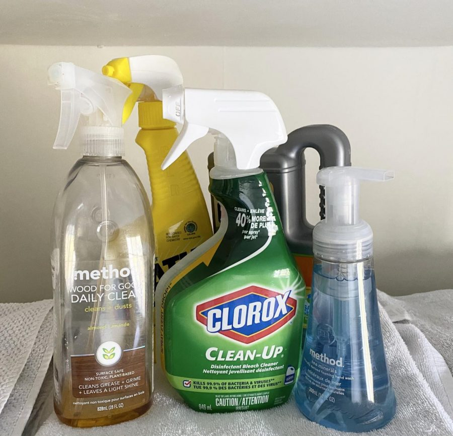 Many+households+are+taking+necessary+precautions+to+combat+the+rapid+spread+of+the+coronavirus.++Cleaning+products+like+these+can+prevent+the+transfer+of+germs%2C+washing+your+hands+thoroughly+throughout+the+day+can+also+be+beneficial.+