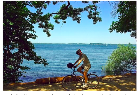 A masked cyclist enjoys an afternoon during the quarantine (image taken from the Internet and labeled for reuse).