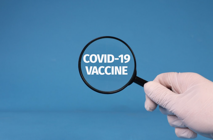A+COVID-19+vaccine+is+currently+being+developed.
