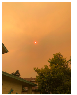 The dangerously polluted orange skies in  California have taken over the sky even after  the fires have been extinguished. If inhaled,  people can experience the effects of what is  similar to smoking 20 packs of cigarettes.
