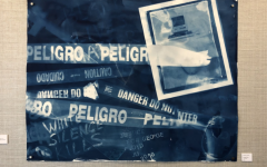 """A cyanotype art piece by Margaret Roleke """"Danger/Peligro"""" depicts what she deems as social and political issues affecting the country this year."""