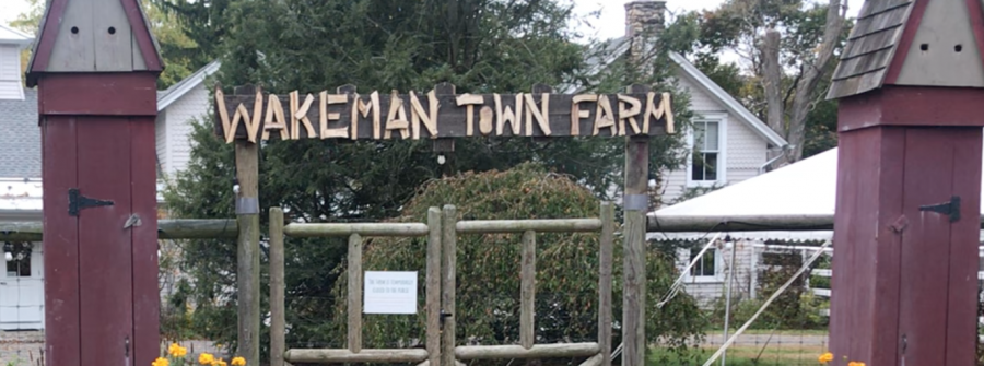 Wakeman+Town+Farm+welcomes+volunteers