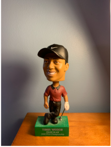 Golf fans all around the world are praying that Tiger Woods will be able to play in another golf tournament again after being involved in a serious car accident.